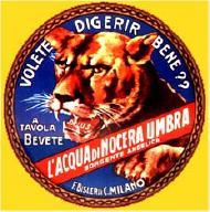 il primo logo dell' Acqua di Nocera