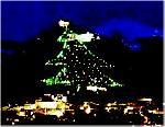 L'Albero più grande del mondo
