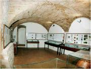 Museo - Necropoli etrusca di Strozzacapponi