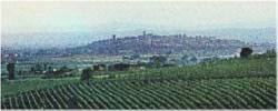 Veduta di Torgiano